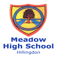 Meadow High School Logo